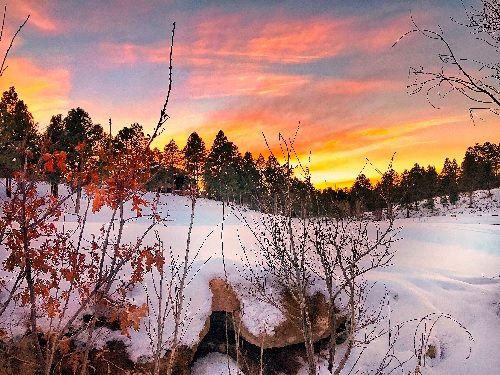 flagstaff what is home worth